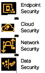 Muli-layered security