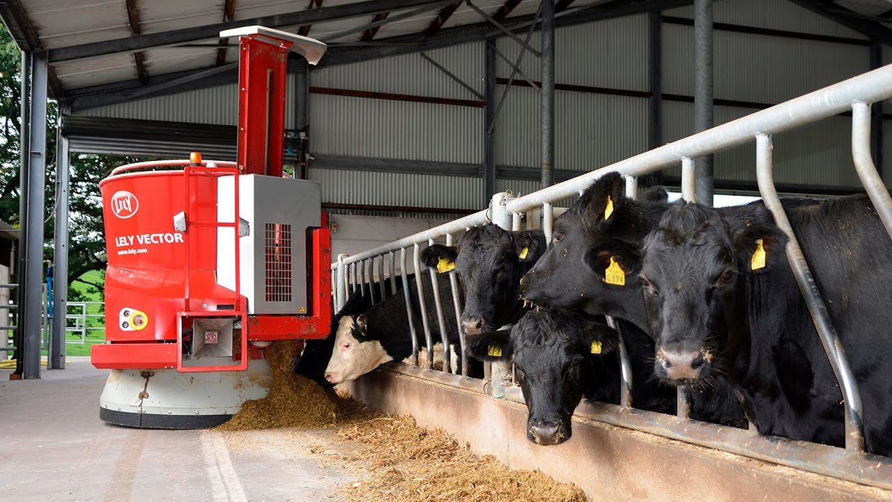 Lely: leading the way in industrial change